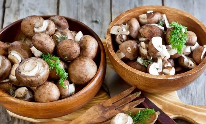 Можно ли грибы при гастрите