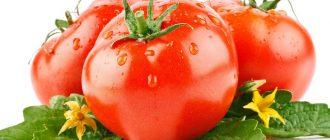Можно ли при гастрите помидоры